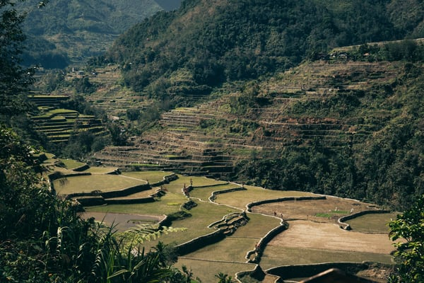 northernluzorn banaue 0046
