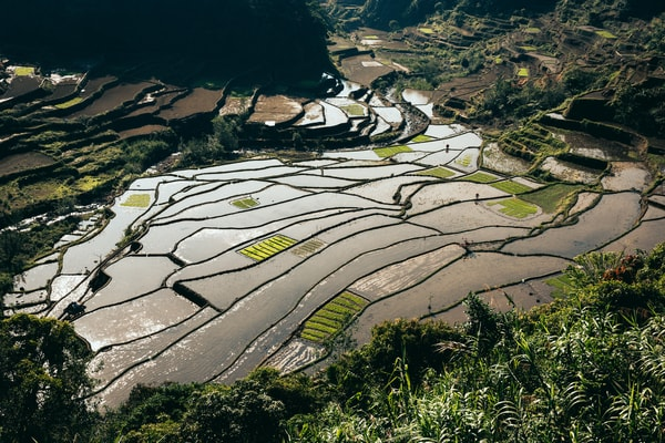 northernluzorn banaue 0143