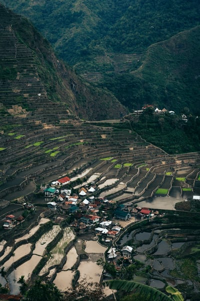 northernluzorn banaue 0163