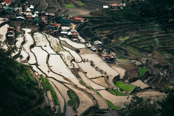 northernluzorn banaue 0165