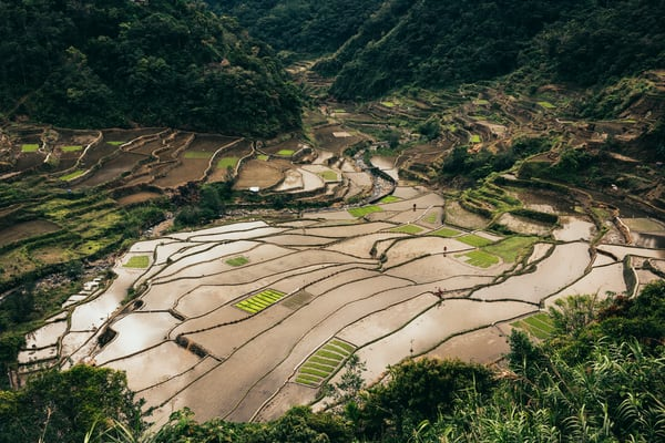 northernluzorn banaue 0322