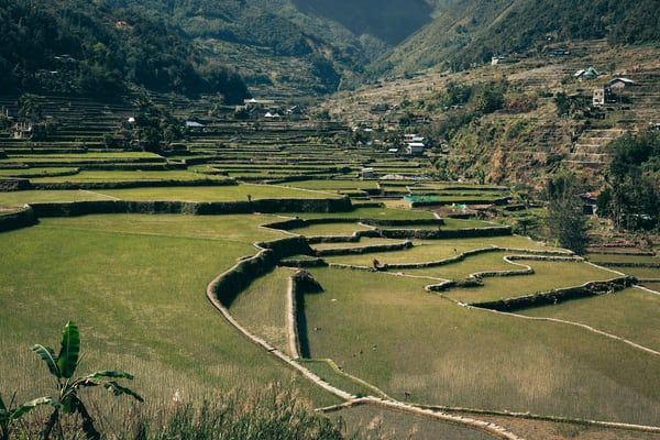 northernluzorn banaue 0069