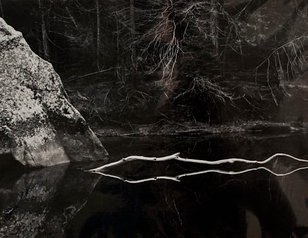 White Branch, Merced River by John Sexton fine art photograph for sale