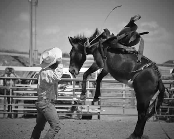 Fine Art Photograph of a Bucking Mule for Sale