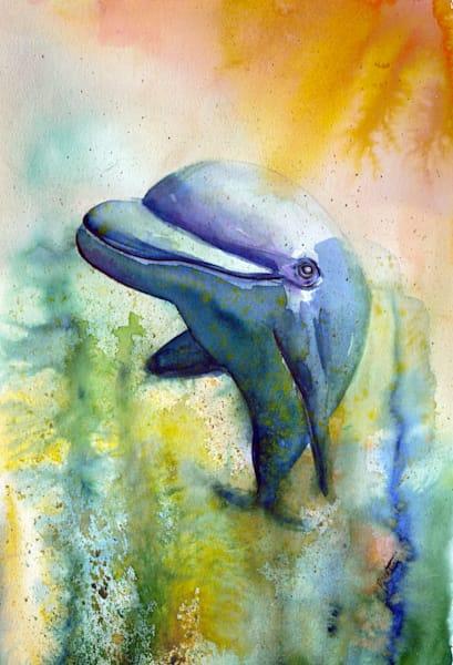 Big Happy Dolphin Face
