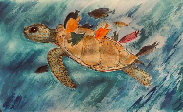 Turtle Wax Art | DavidPVance Prints