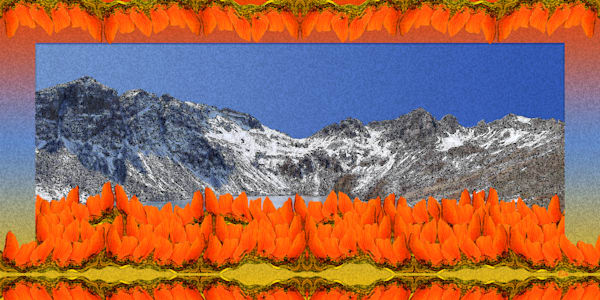 Clear Lake photograph for sale by Maureen Wilks bordered by abstract view of orange nasturtiums