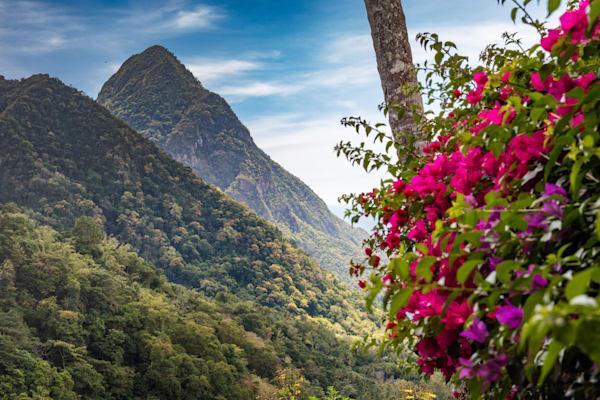 Island Majesty, Gros Piton, St Lucia