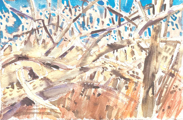 Winter Woods Tangle