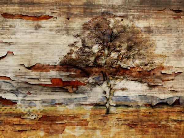 Earth Landscape V