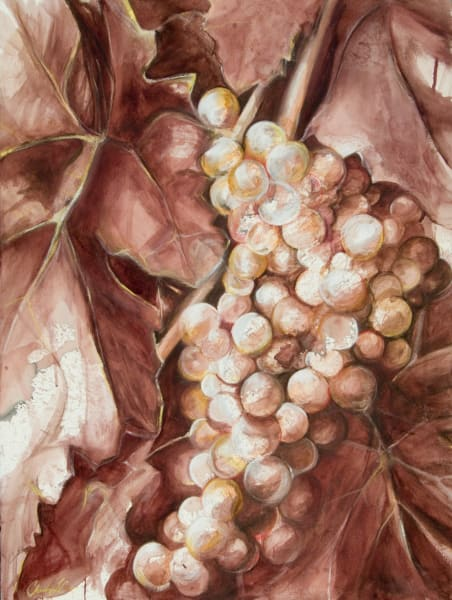 Viognier, fine art print by Christina LoCascio