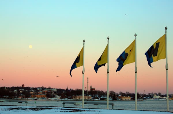 Full Moon Flags