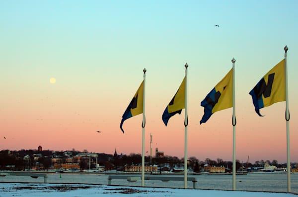 Full Moon Flags Art | toddbreitling