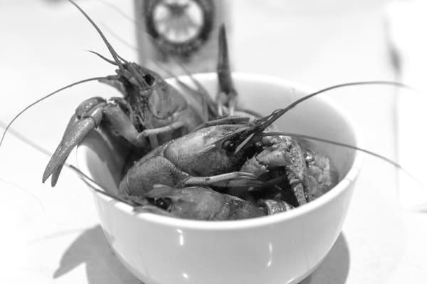 New Orleans Crawfish Gumbo YAYA