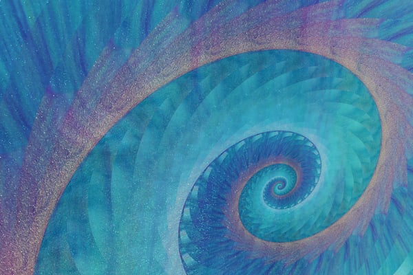 """Big Fish Spiral"" Graphic Design Art Print"