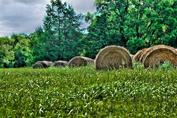 Rural Hay Bales