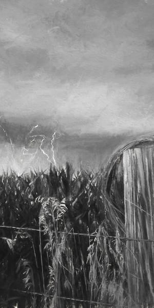 Lightning and Barbed wire Charcoal