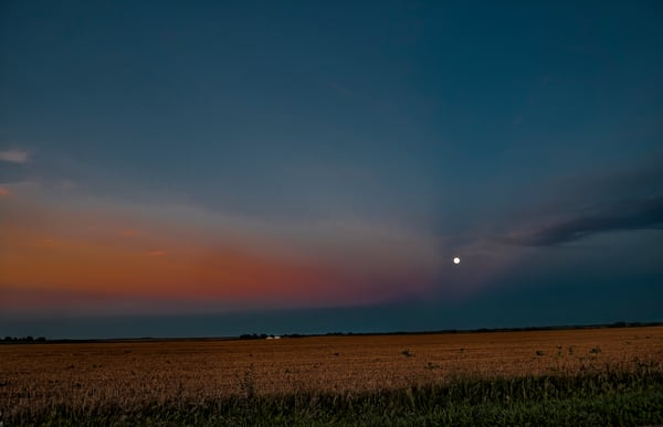 Clatonia Moon Rises in the Field