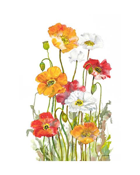 8x10 Happy Poppies On Paper | HFA print gallery