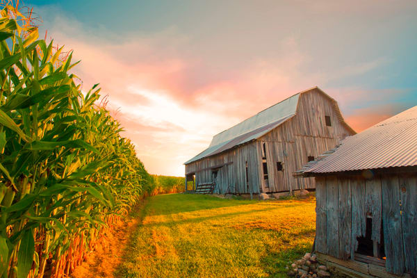 Barns and Farming Photography