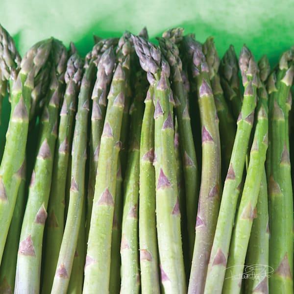 Asparagus Acrylic Block