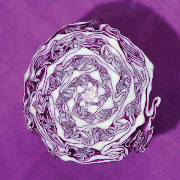 Purple Cabbage Acrylic Block
