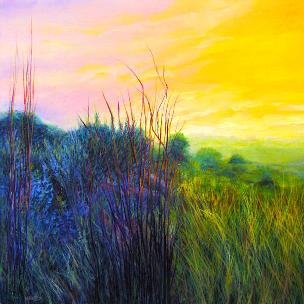 Central Texas Grassland Sunrise