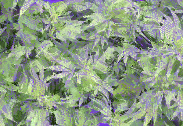 Algorithmic Nature art by Neo Impressionist artist Peter McClard. Available as photographic prints & originals.
