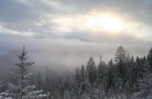Time in Winter Fog