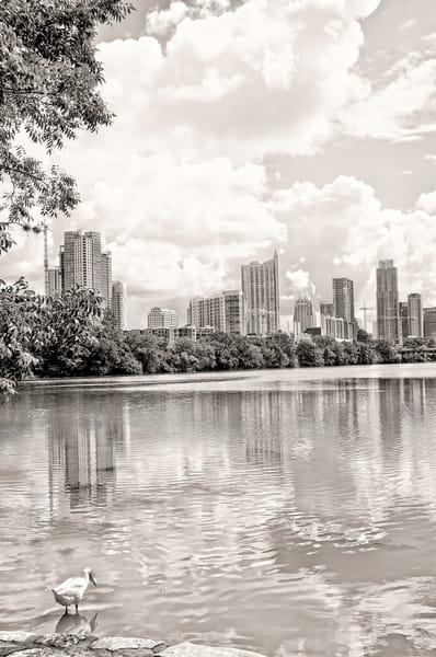 Austin Skyline, Vertical