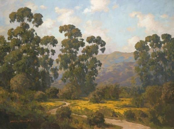 California Backcountry