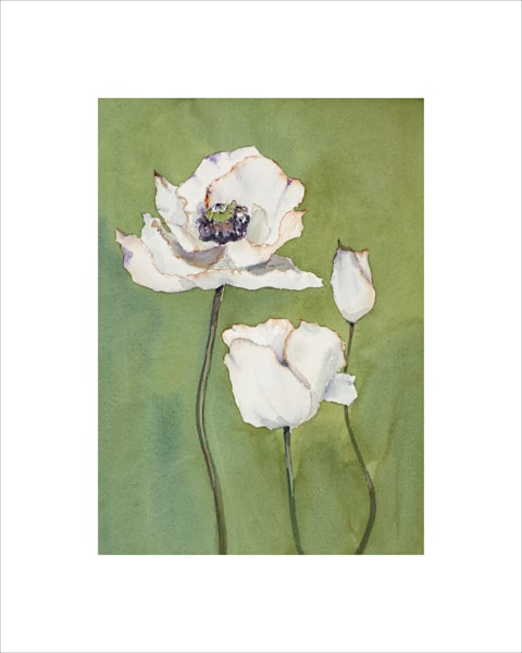 8x10 So White On Paper | HFA print gallery