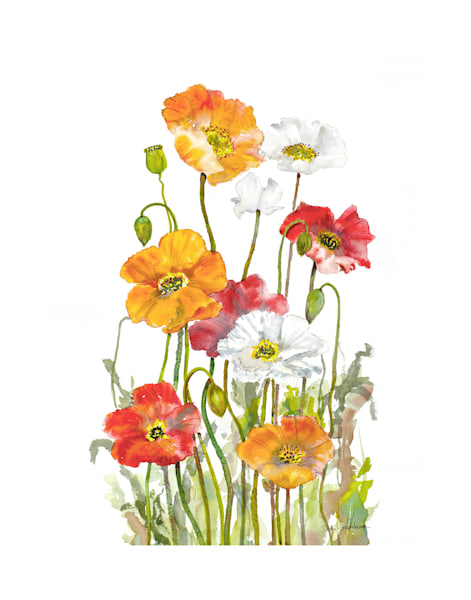 11x14 Happy Poppies On Canvas | HFA print gallery