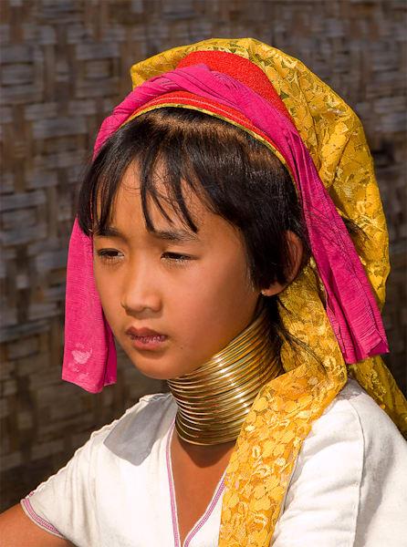 Burmese Ring Neck