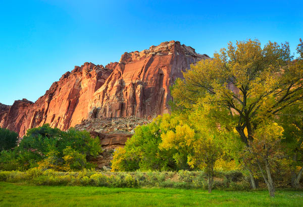 Autumn Capitol Reef Art Prints