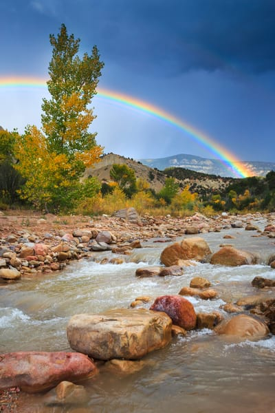 Coal Creek Rainbow Art Prints