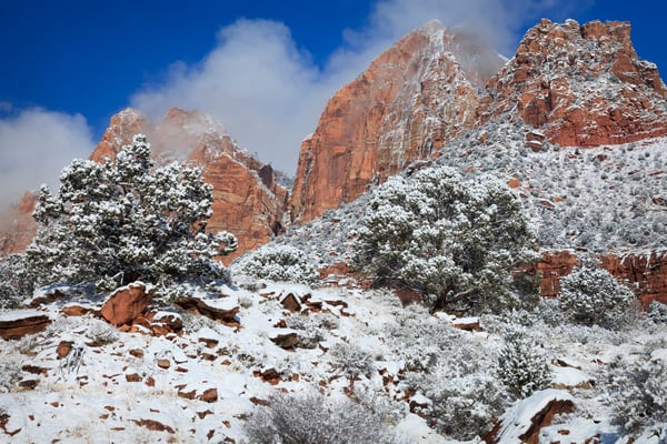 Zion Winter Art Prints