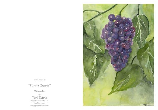 5x7 Purple Grapes Card | HFA print gallery