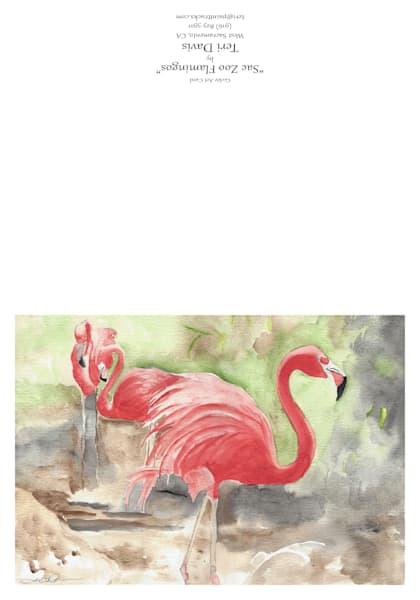 Sac Zoo Flamingos Card | HFA print gallery