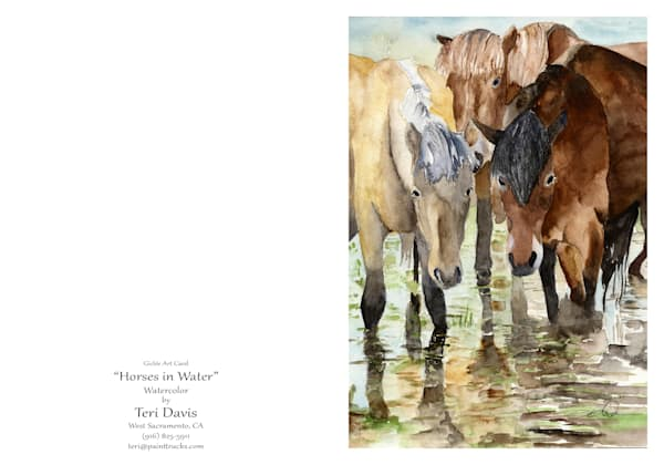 5x7 Horses In Water Card | HFA print gallery