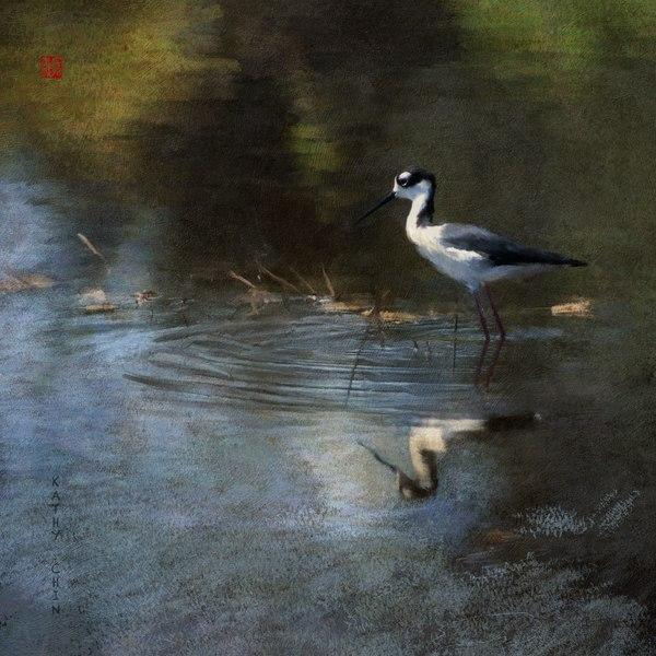 Stilt Reflection