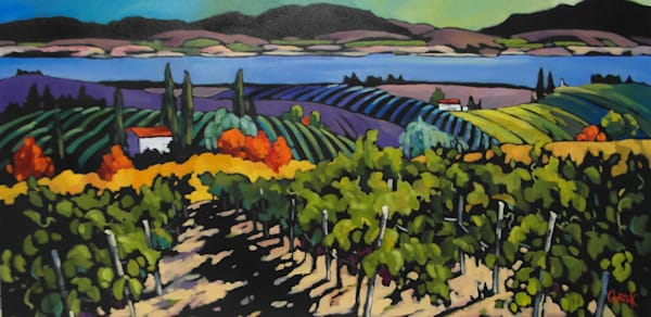vineyard in the Okanagan