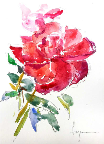Red Rose Watercolor Art Print on Canvas or Paper by Dorothy Fagan