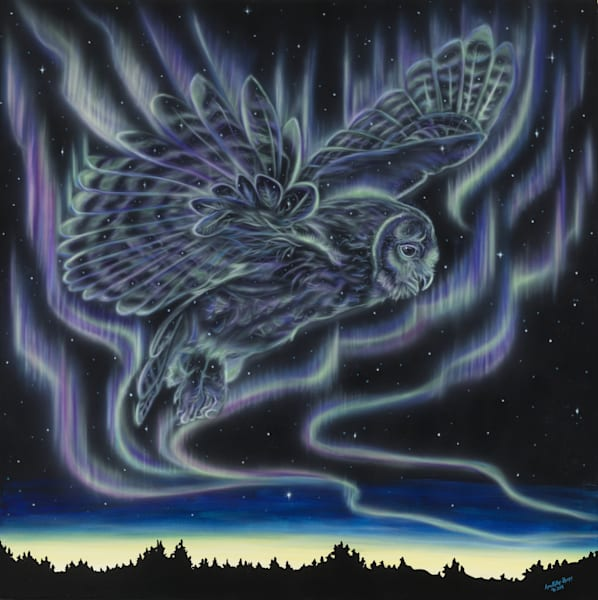 Sky Dance   Owl Art | Amy Keller Rempp Art