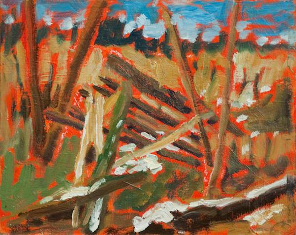 Harold Road Woods In Late Winter Art   Keith Thirgood