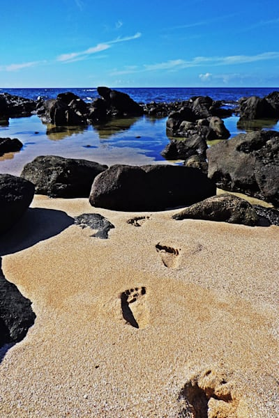 11x14 Footprints To North Shore On Canvas | HFA print gallery