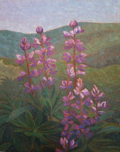 Lupines - Canadian artist Sherry Nielsen - original oil