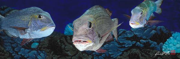 Traditional Marine Life Paintings | Mu Pile by Desmond Thain