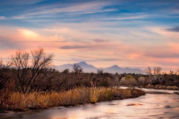 Sabino Creek Winter Landscape #1