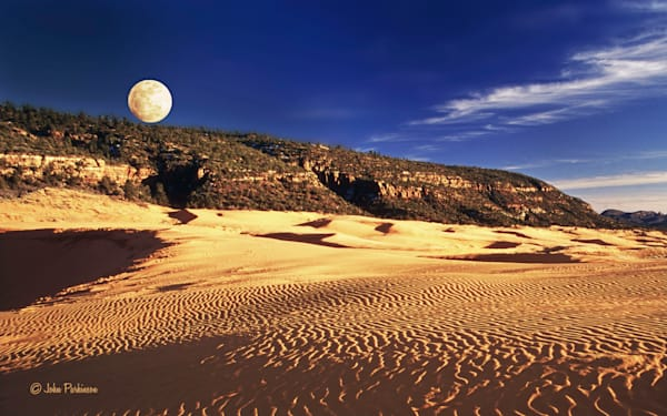 Coral Pink Sand Dunes in southern Utah.